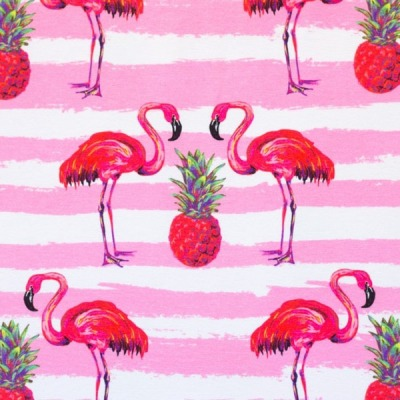 60619 Jersey Stretch Flamingo Ananas rosa