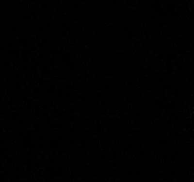 344681950064 Stoff Baumwolle schwarz uni