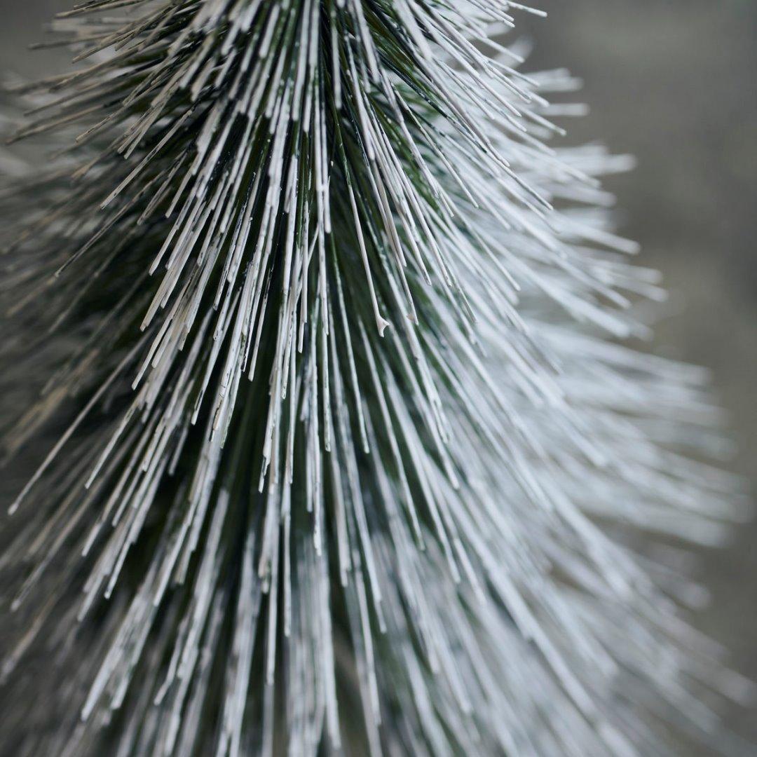 Weihnachtsbaum Sprinkle / natur H:30cm 3