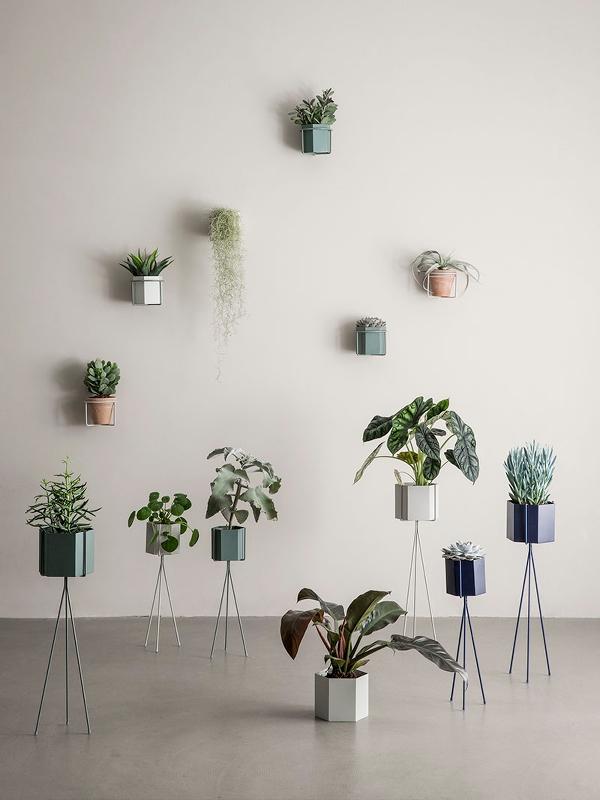 Pflanzenständer PLANT STAND low - 2