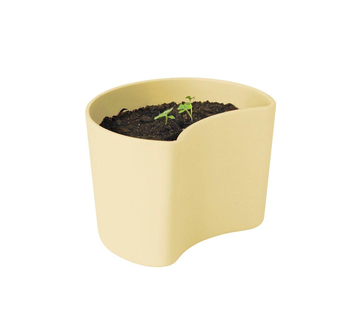 Your Tree Blumentopf mit Samen gelb