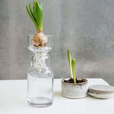 Vase CINTH aus Glas klar von