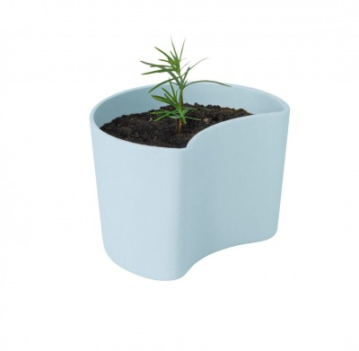 Your Tree Blumentopf mit Samen blau