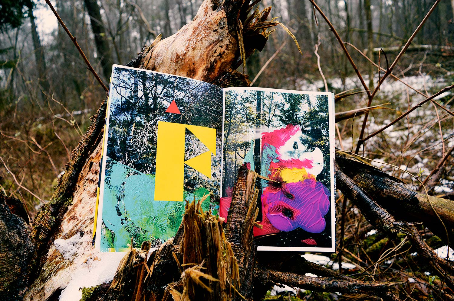 IN THE WOODS 5