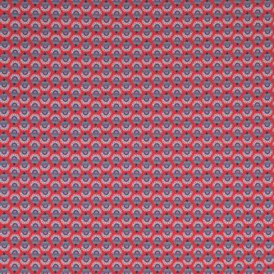 Jersey Periwinkle rot by Jolijou Swafing