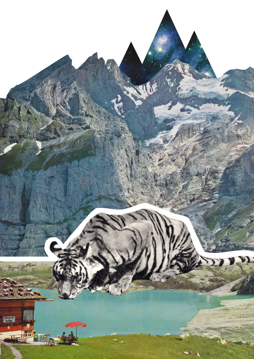 Tiger Collage Poster Kunstdruck A4