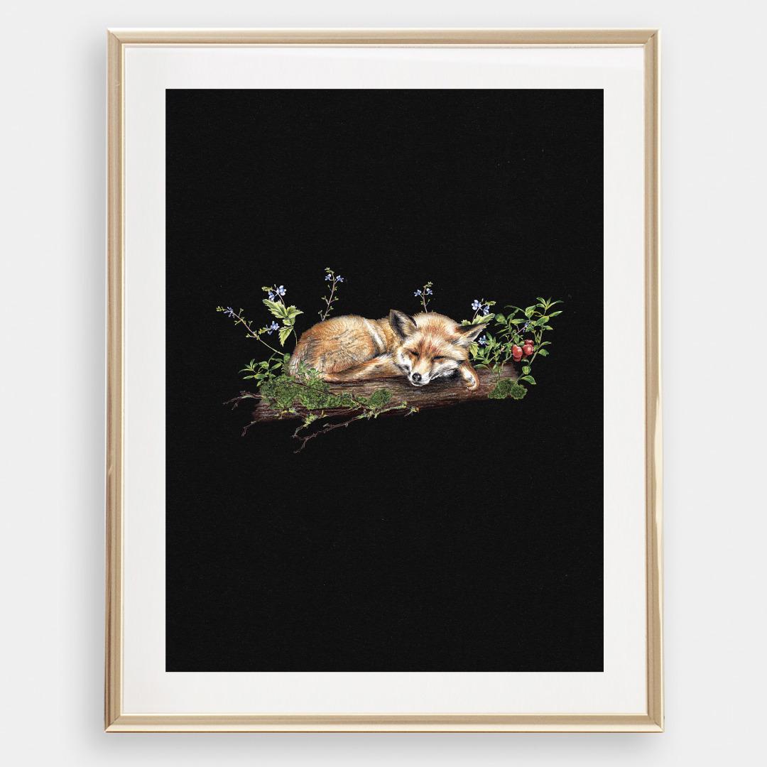 Fuchs im Wald , Poster, Kunstdruck, A4, Buntstiftzeichnung - 1