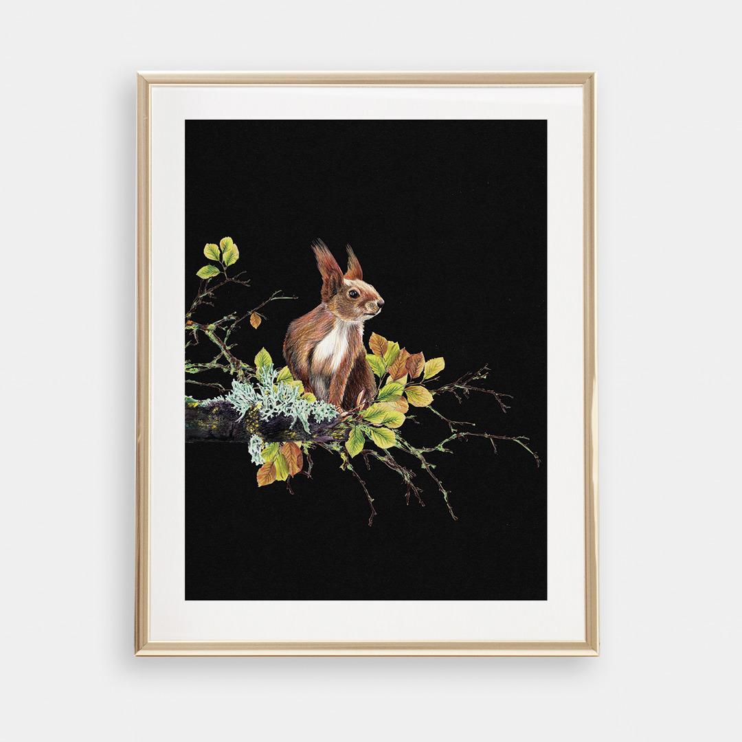 Eichhörnchen auf dem Ast , Poster, Kunstdruck, A4, Buntstiftzeichnung - 1