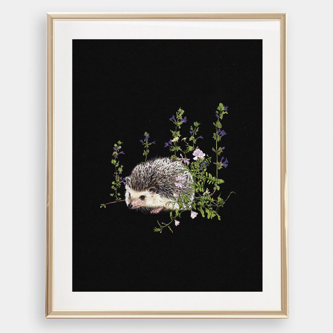 Igel im Wald , Poster, Kunstdruck, A4, Buntstiftzeichnung - 1