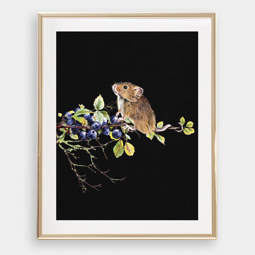 Maus mit Blaubeeren , Poster, Kunstdruck, A4, Buntstiftzeichnung - 1