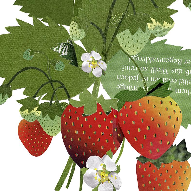 Collage Erdbeerpflanze Poster Kunstdruck Pflanzenposter