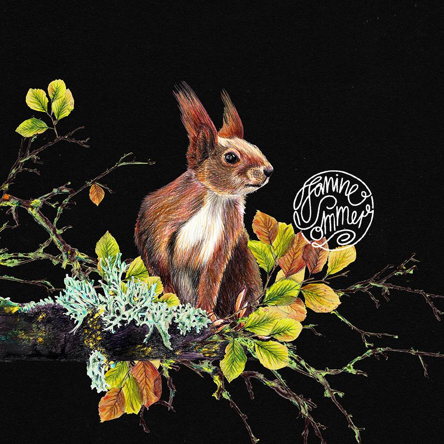 Eichhörnchen auf dem Ast , Poster, Kunstdruck, A4, Buntstiftzeichnung - 2