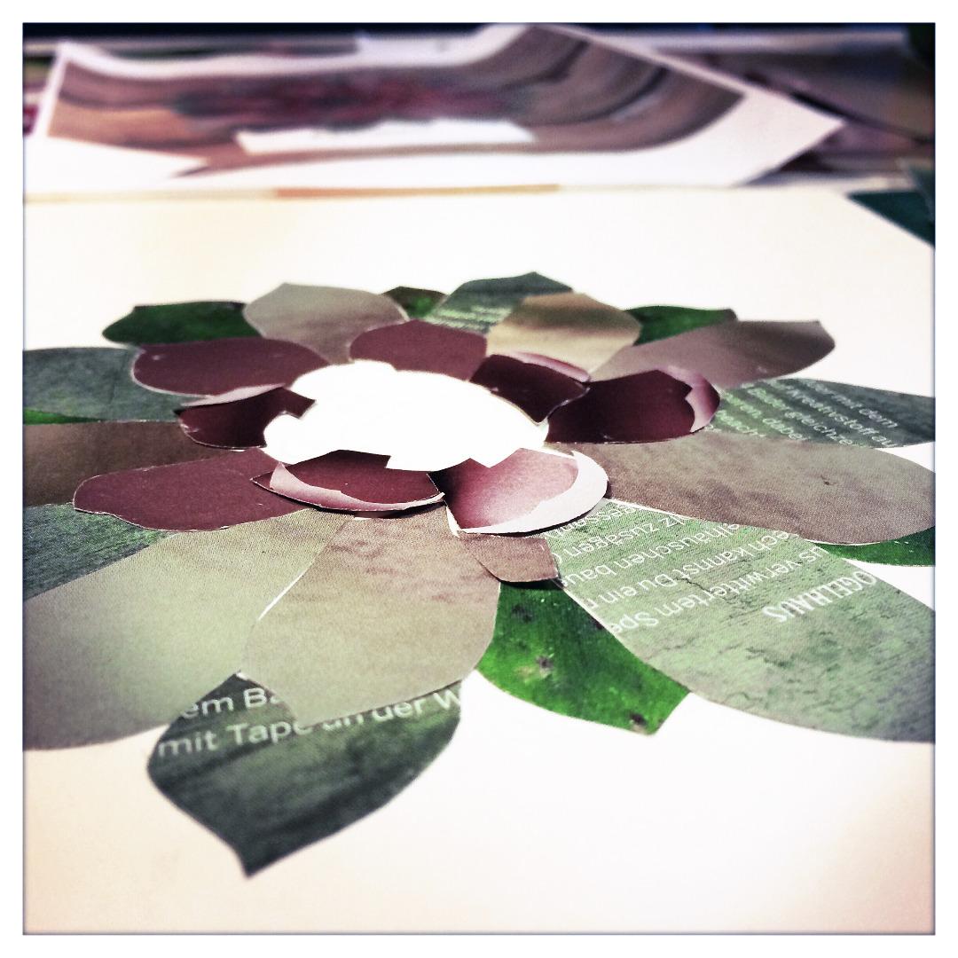 Collage Sukkulente Kunstdruck Pflanzenposter - 4