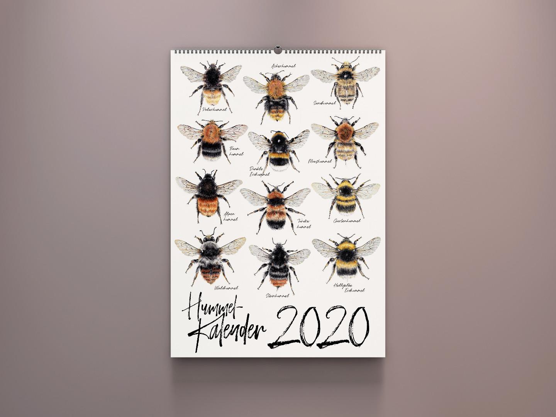 Wandkalender Kalender kaufen Hummel Zeichnungen Hummelarten