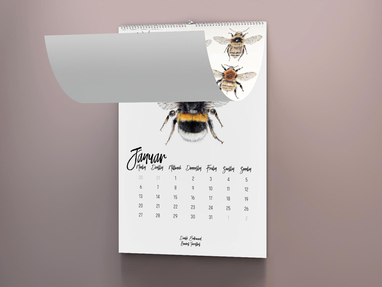 Wandkalender 2020, Kalender 2020 kaufen, Hummel Zeichnungen, Hummelarten, Kunstdrucke kaufen, Wildbienen, Illustrationen Janine Sommer - 2