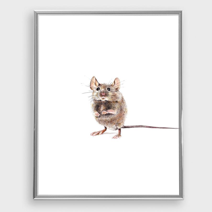 Hausmaus Poster Kunstdruck A4 Maus Zeichnung