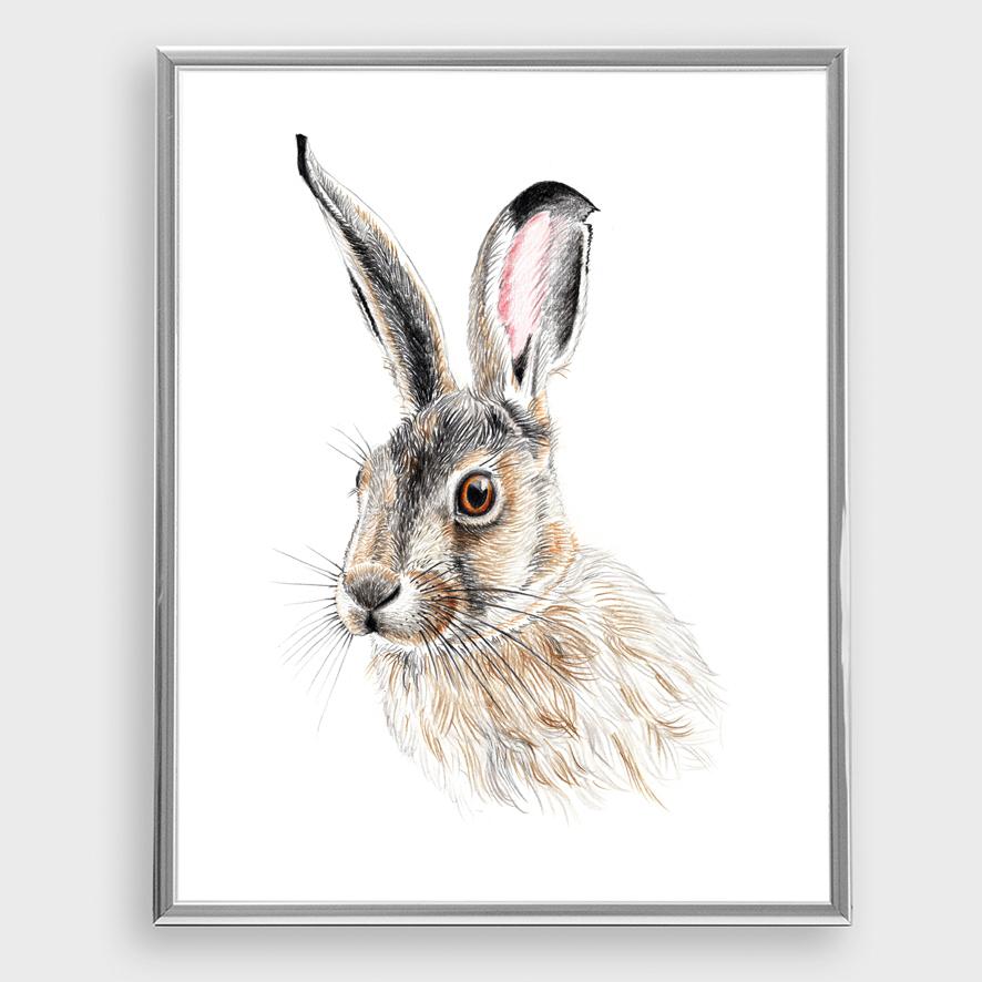 Zeichnung Hase Poster Kunstdruck A4 2