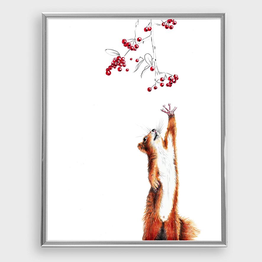 Zeichnung Eichhörnchen Poster Kunstdruck A4
