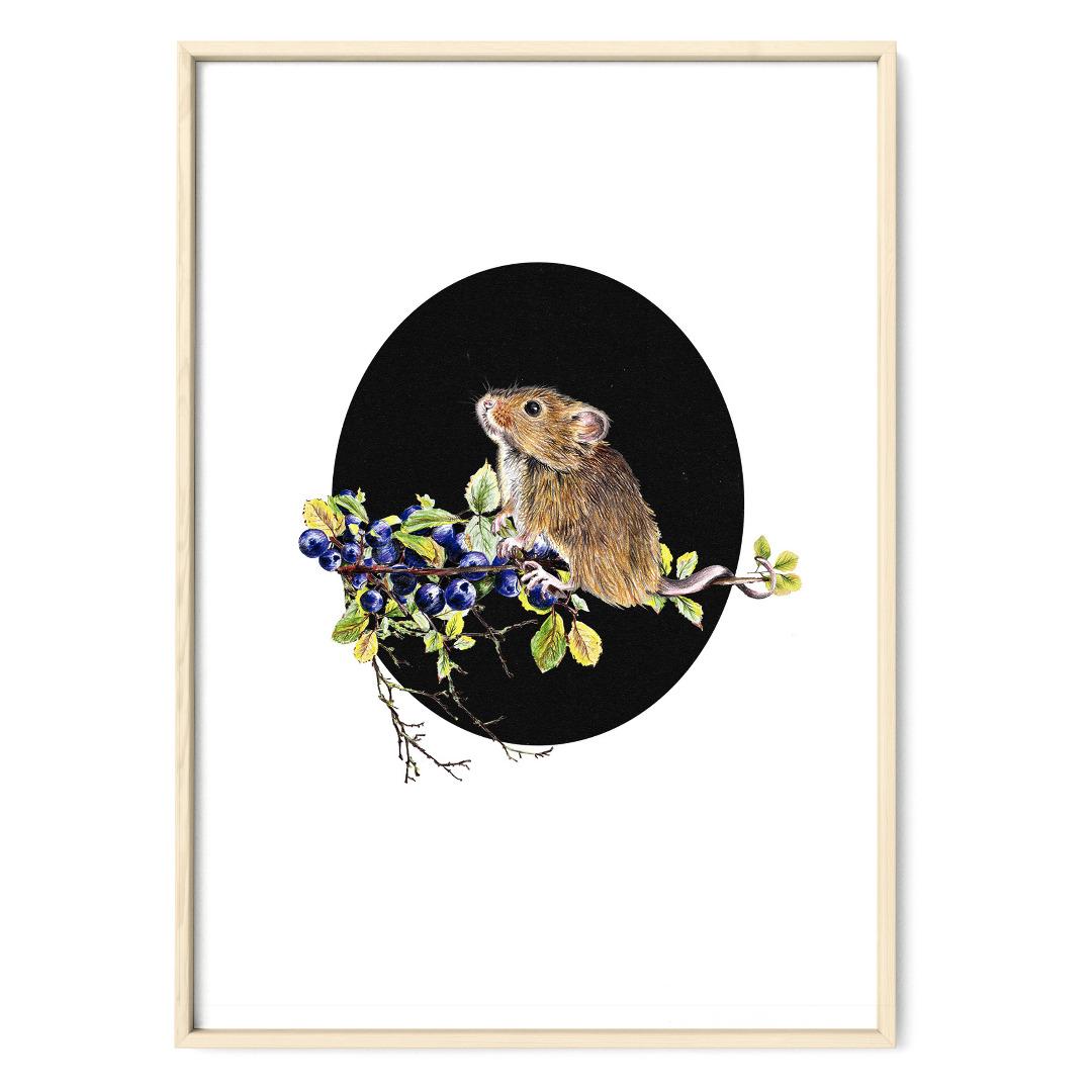 Maus mit Blaubeeren oval Poster Kunstdruck