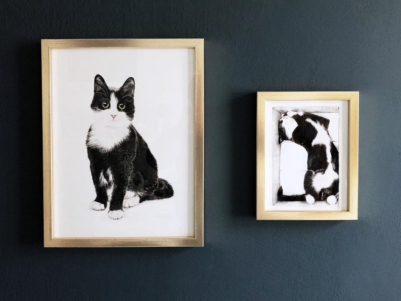 Katze im Karton Zeichnung Poster Kunstdruck A4