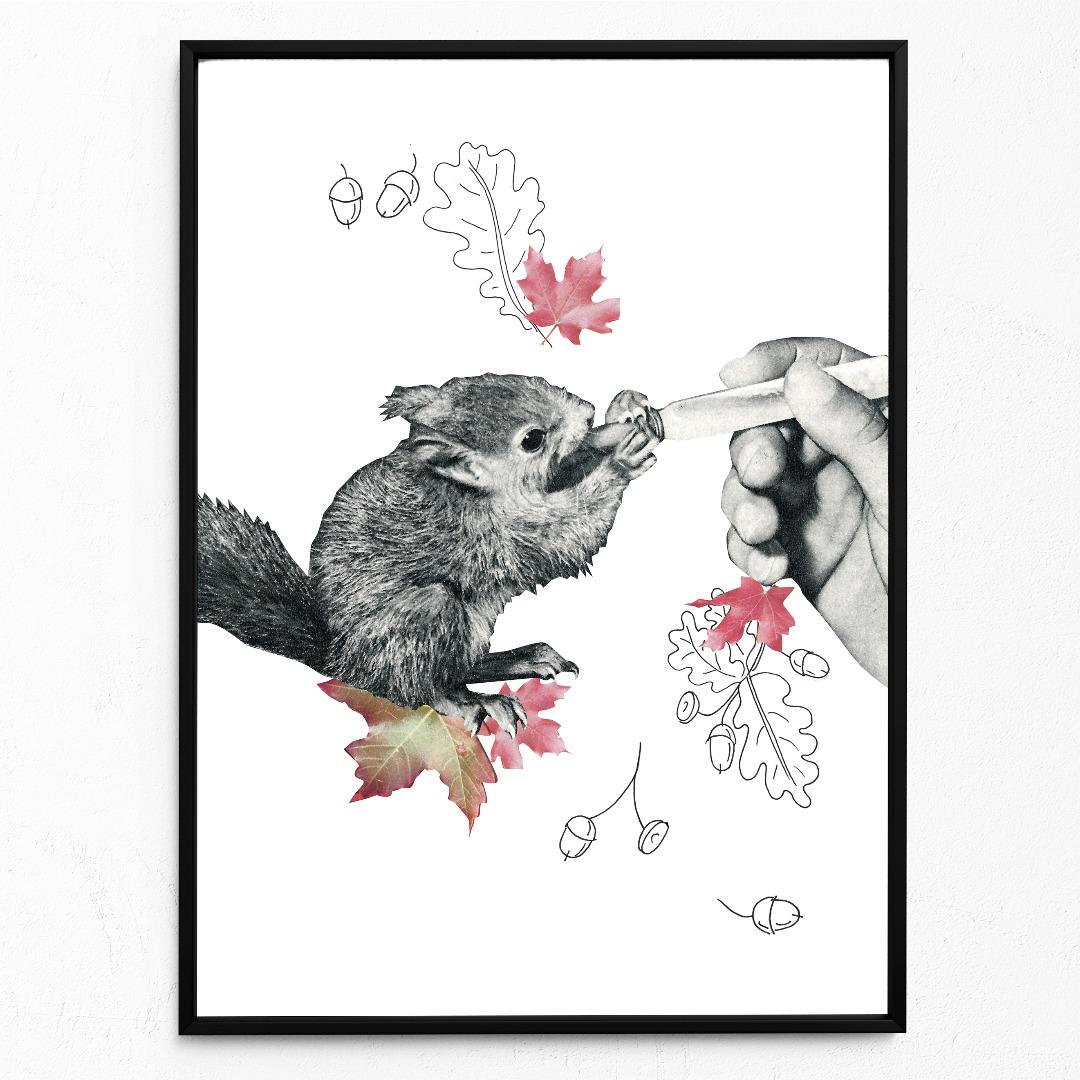 Baby-Eichörnchen Poster Kunstdruck DIN A3