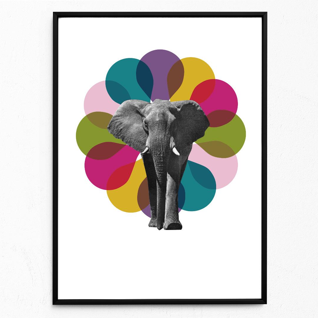 Elefant Poster Kunstdruck DIN A3