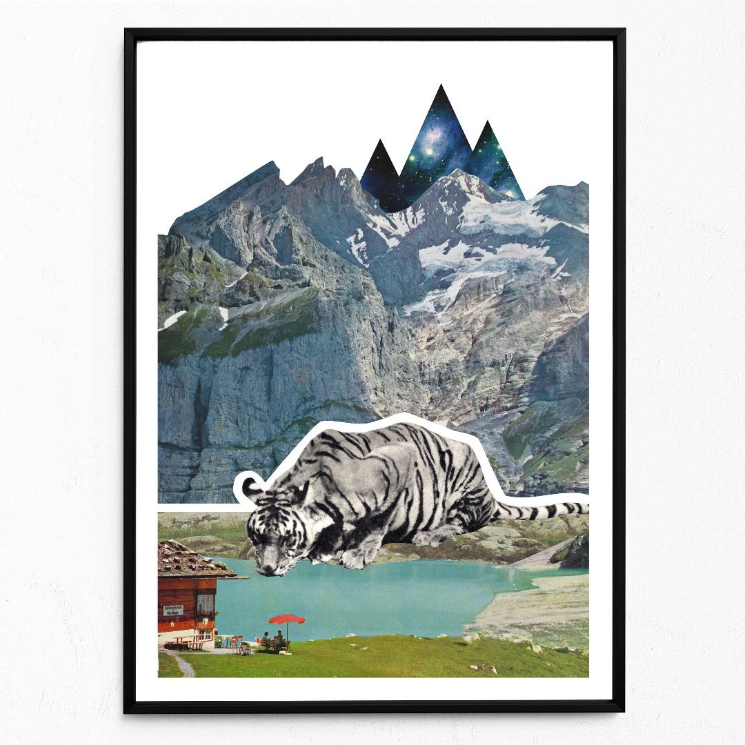 Bergtiger Poster Kunstdruck DIN A3