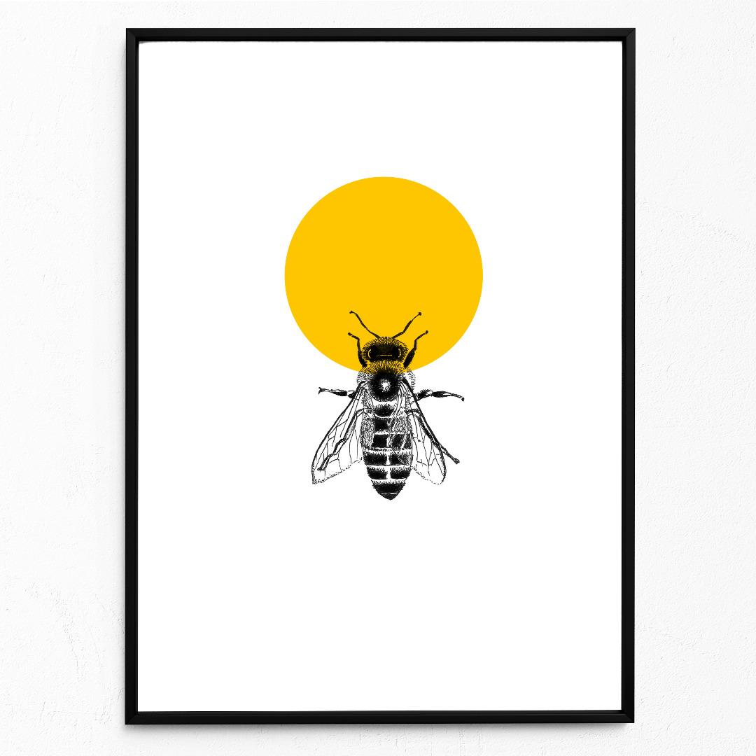 Honigbiene, Biene, Poster, Kunstdruck, A4, Insektenzeichnung, Biene gezeichnet - 1