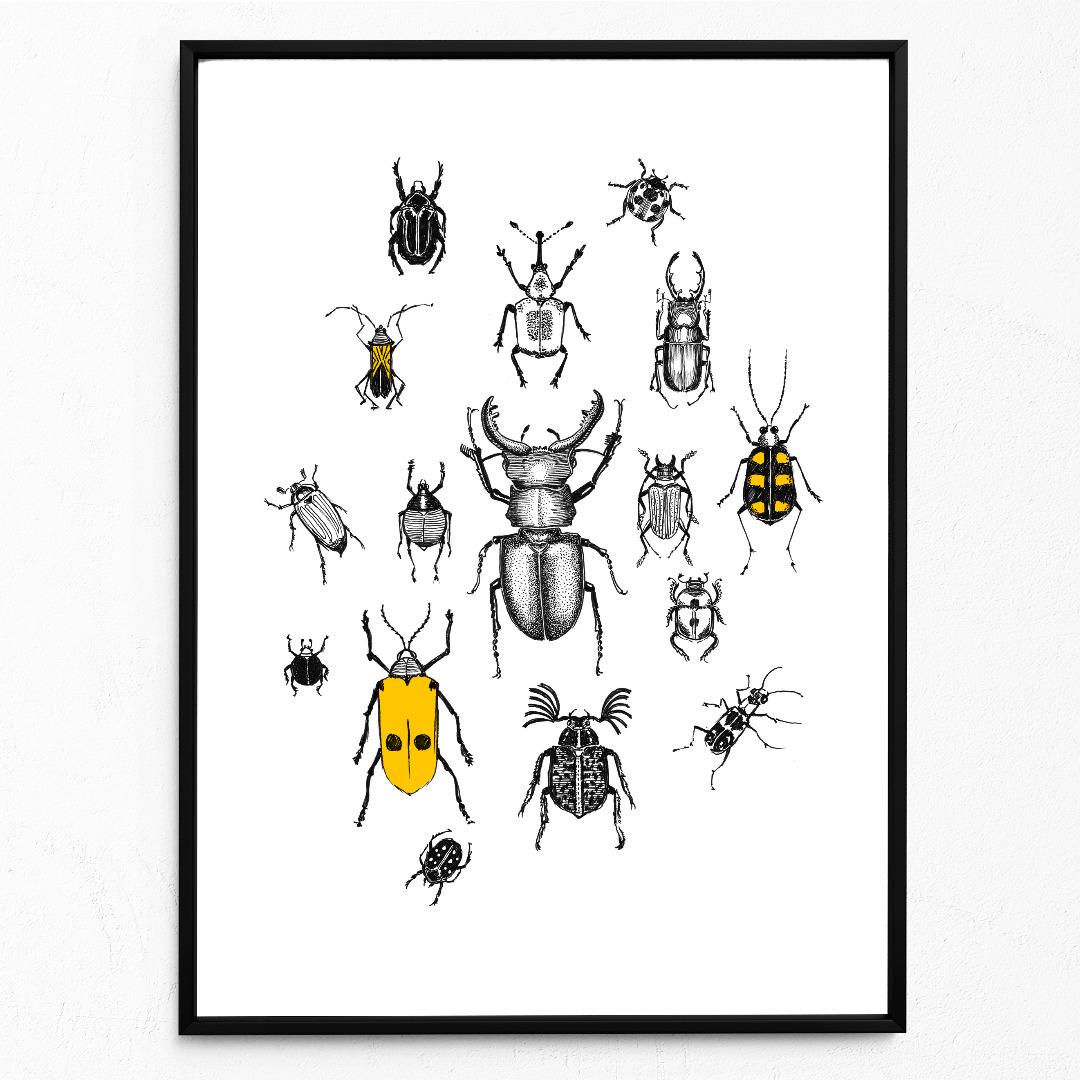 Käferparade Käfer Poster Kunstdruck A4 Insektenzeichnung - 1