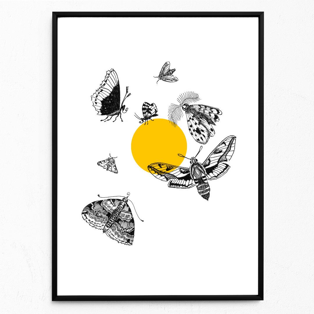 Motten fliegen zum Licht Motten Poster - 1