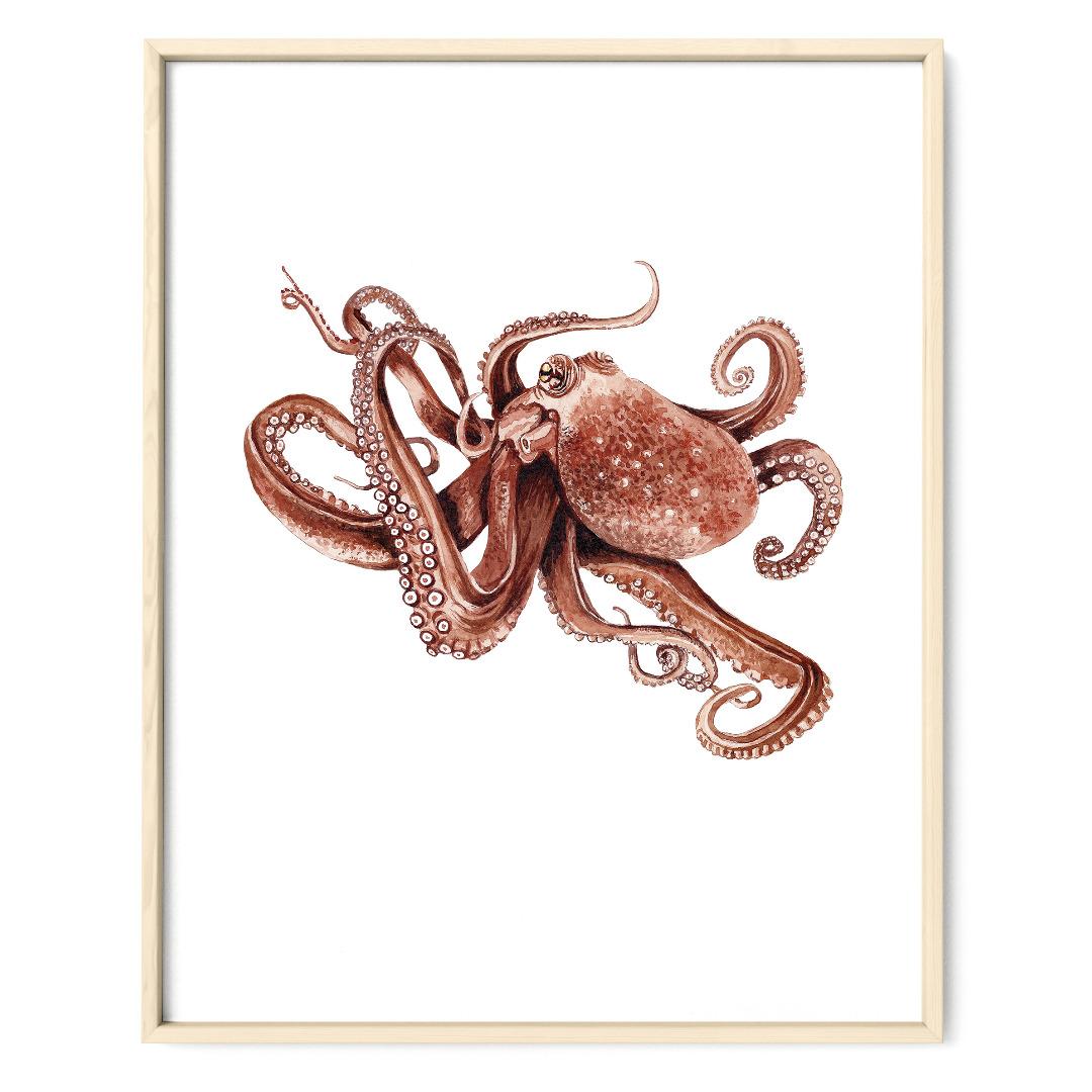 Oktopus Poster Kunstdruck Zeichnung Meerestier