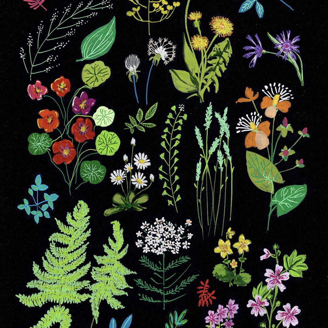 Grußkarte Wald und Wiesenblumen 2