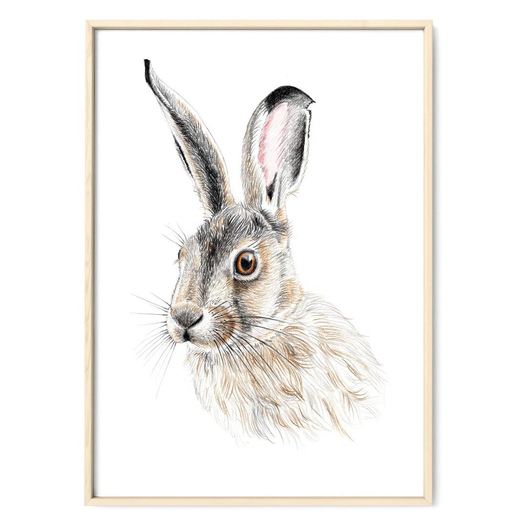 Zeichnung Hase Poster Kunstdruck A4