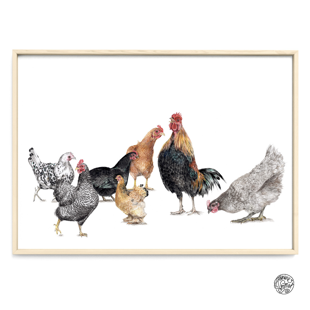 7 Hühner Poster Kunstruck DIN A4