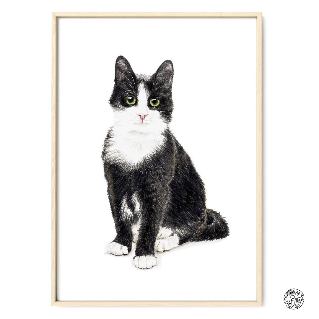 Katze Murmelauge Poster Kunstdruck Zeichnung