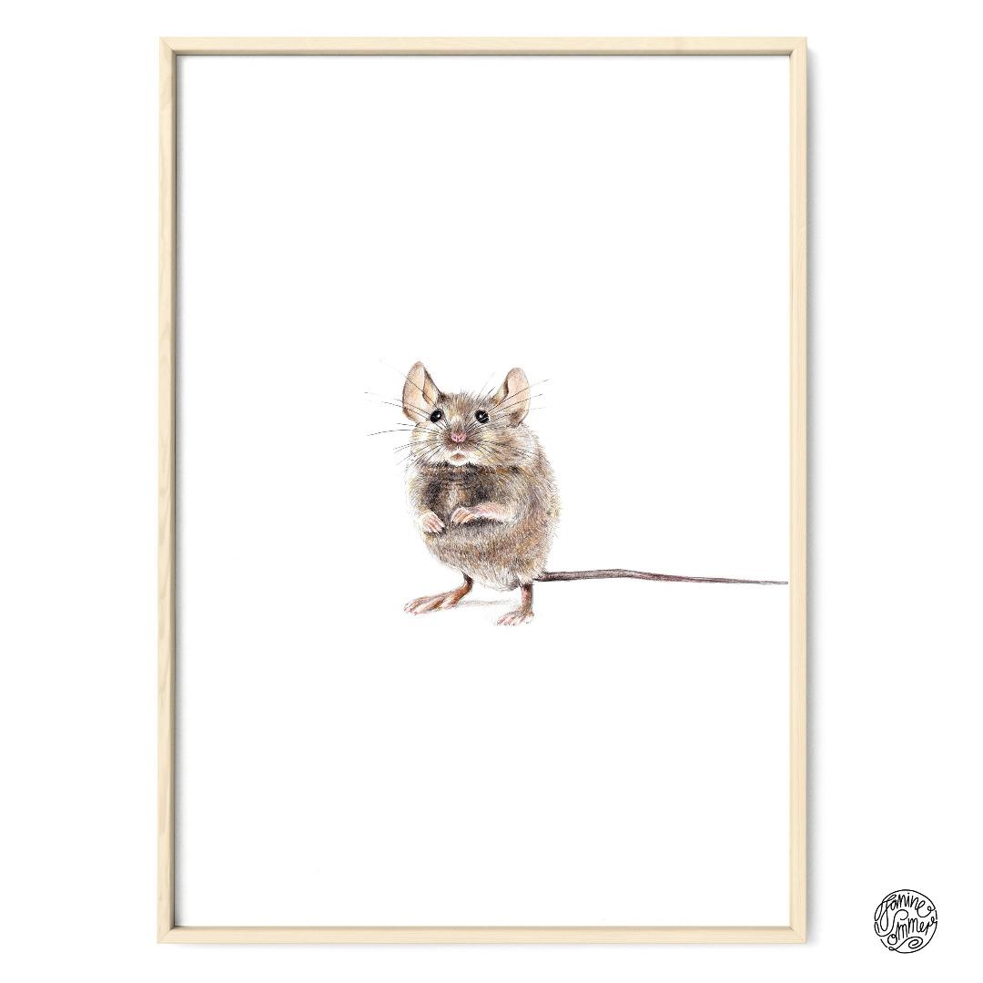 Hausmaus Poster Kunstdruck Zeichnung Maus