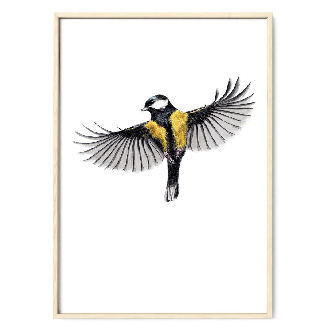 Kohlmeise im Flug Zeichnung Poster Kunstdruck - 1