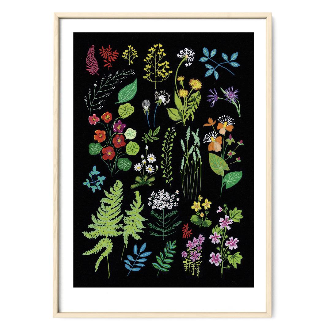 Wald und Wiesenblumen Poster Kunstruck DIN