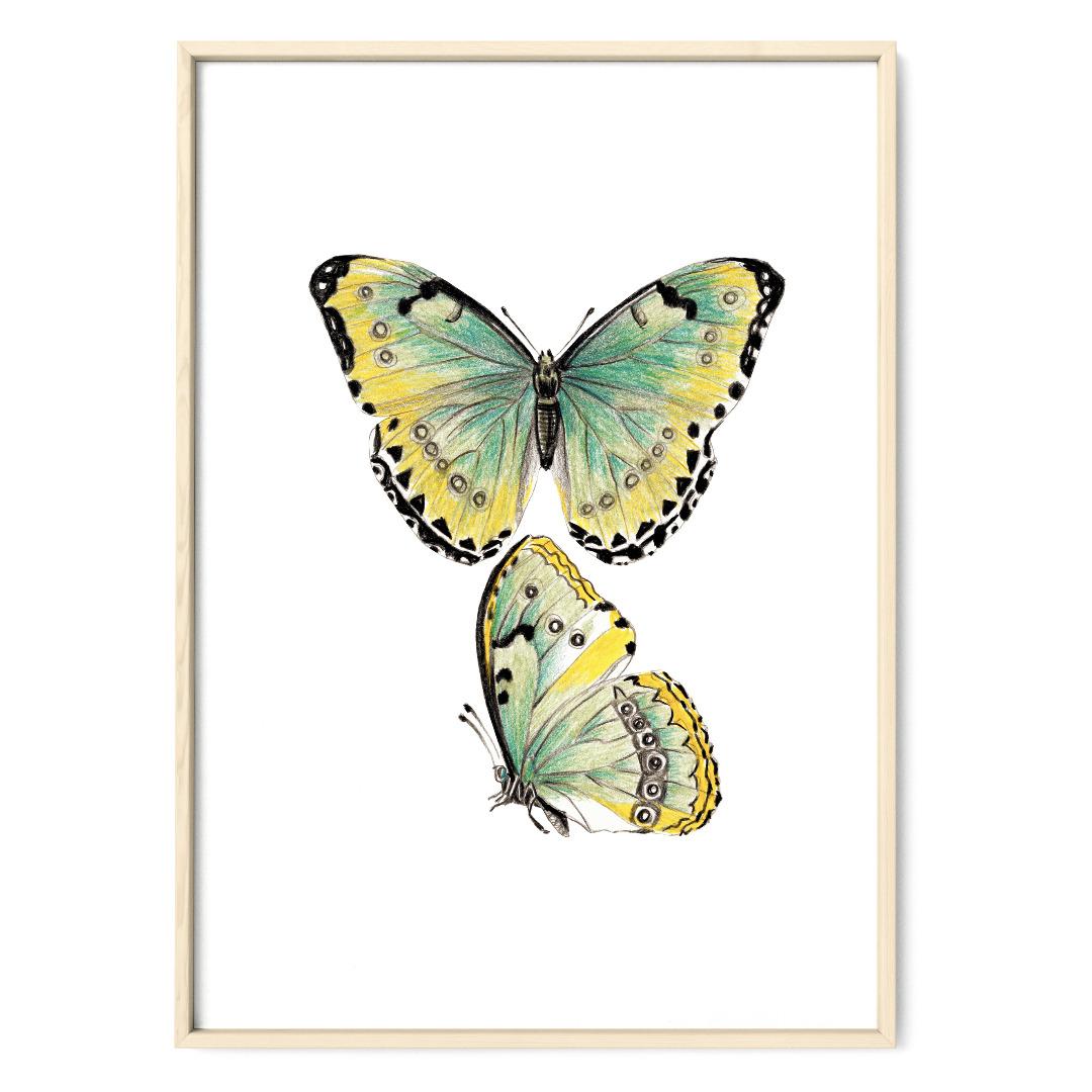 Schmetterlinge gelb-grün Poster Kunstdruck Zeichnung