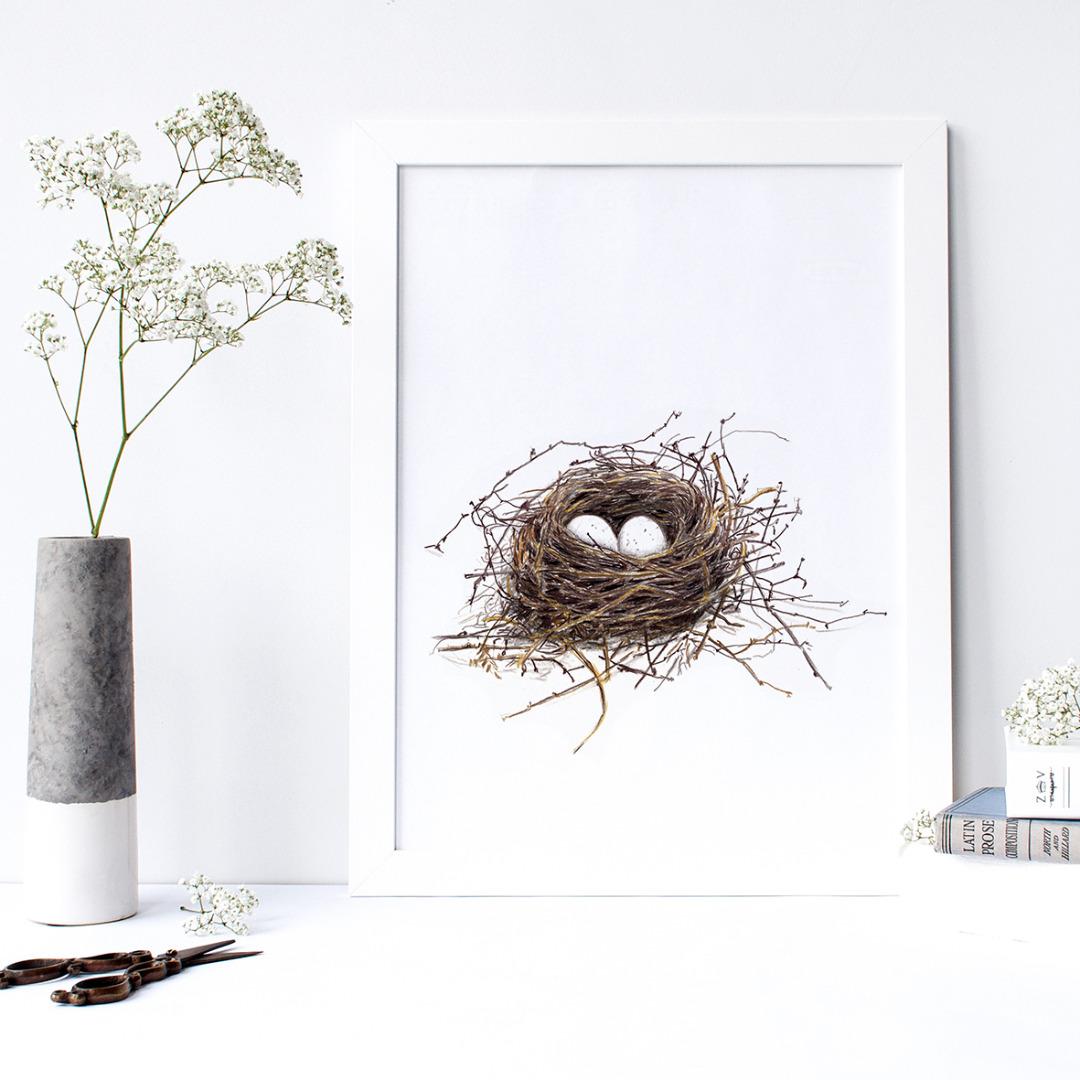 Vogelnest Poster Kunstdruck DIN A4 4