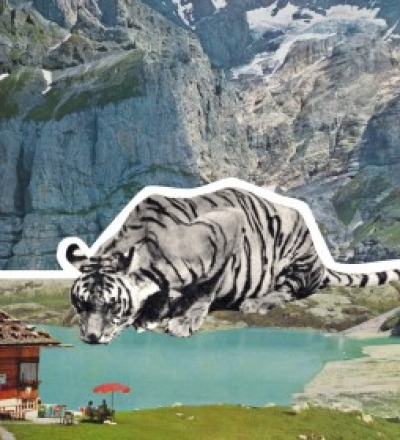 Poster Tiger Kunstdruck A3 - Collageart