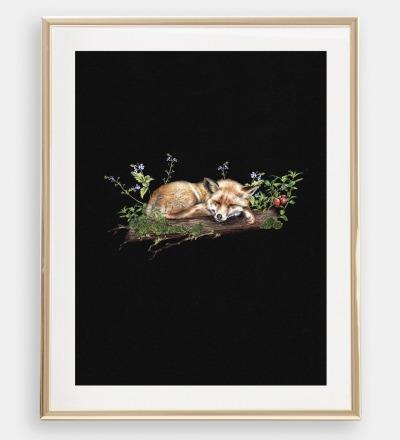 Fuchs im Wald , Poster, Kunstdruck, A4, Buntstiftzeichnung