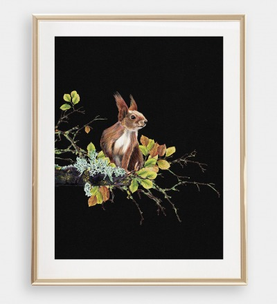 Eichhörnchen auf dem Ast Poster Kunstdruck