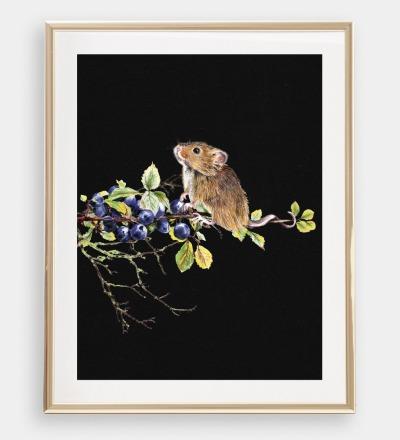 Maus mit Blaubeeren Poster Kunstdruck A4 Buntstiftzeichnung
