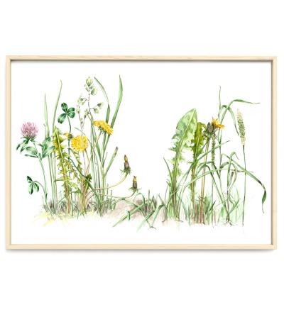 Ein Stück Wiese Poster Kunstdruck Pflanzen