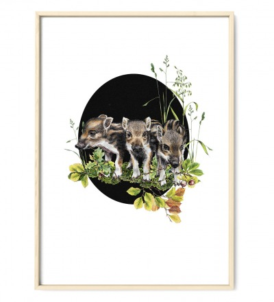 Frischlinge oval Poster Kunstdruck DIN A4
