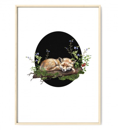 Fuchs im Wald oval Poster Kunstdruck