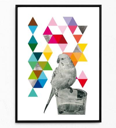 Collage Poster Wellensittich Kunstdruck Vogelposter Tierposter