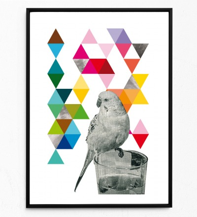 Collage Poster Wellensittich Kunstdruck Vogelposter Tierposter
