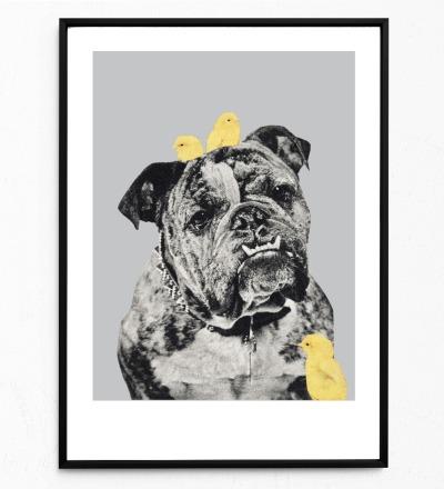 Collage Bulldog Poster Collageposter Kunstdruck Tierposter